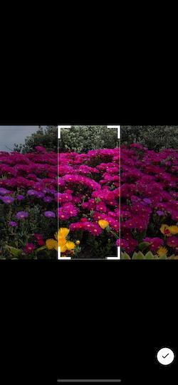 Simulator Screen Shot - iPhone 12 Pro Max - 2021-09-20 at 21 36 50