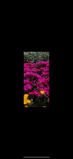 Simulator Screen Shot - iPhone 12 Pro Max - 2021-09-20 at 21 33 17