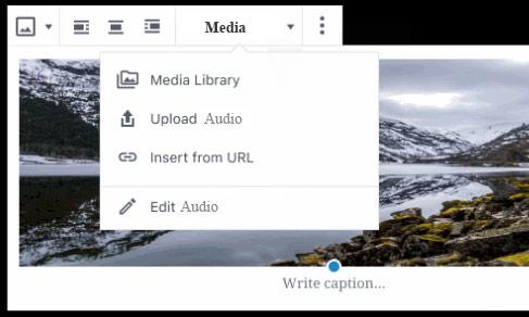 Media-toolbar-drop-down-audio