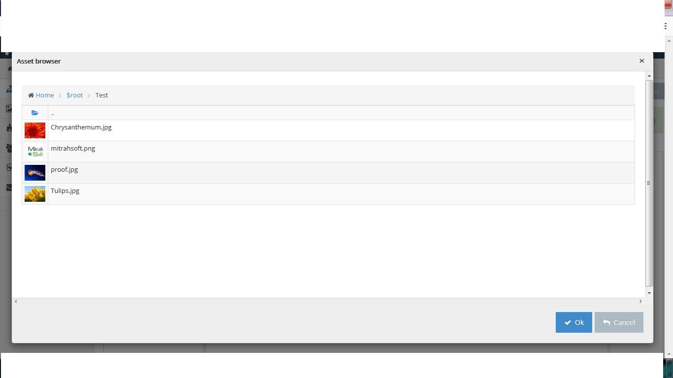 asset_browser