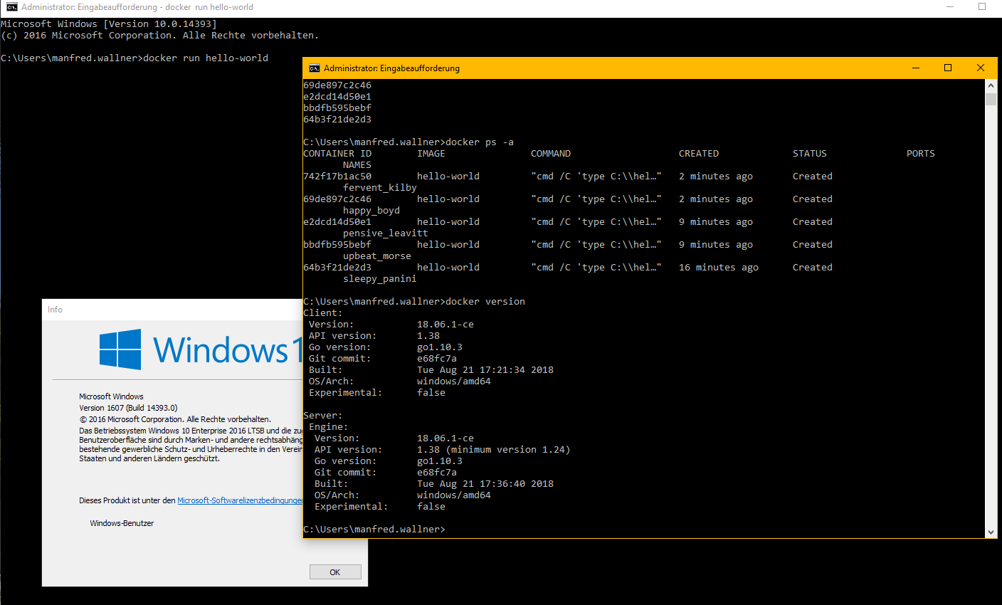 unable to start container on Win 10 LTSB 1607 · Issue #2842 · docker
