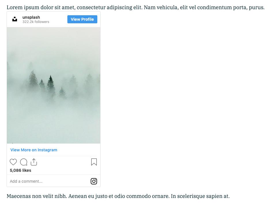 Screenshot of an Instagram photo of pine trees in fog