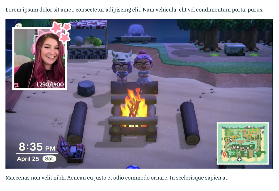 Twitch streamer Vixella playing Animal Crossing