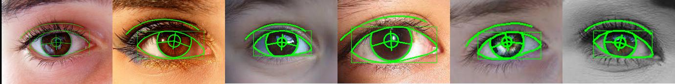 eye models 1