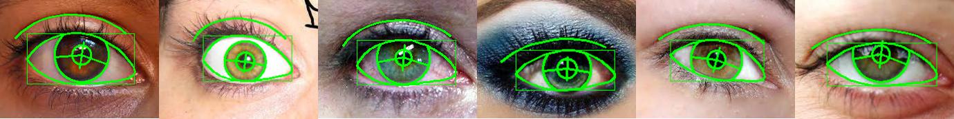 eye models 2