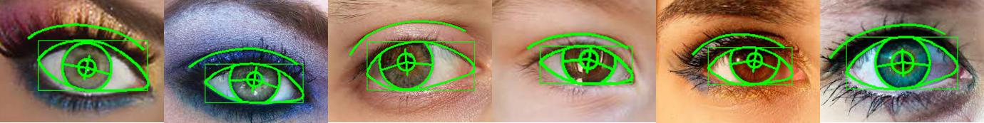 eye models 3