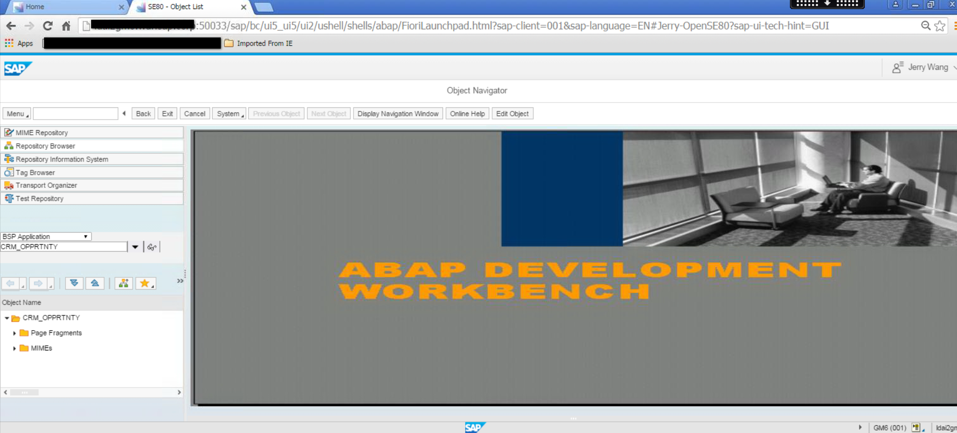 12_se80_browser