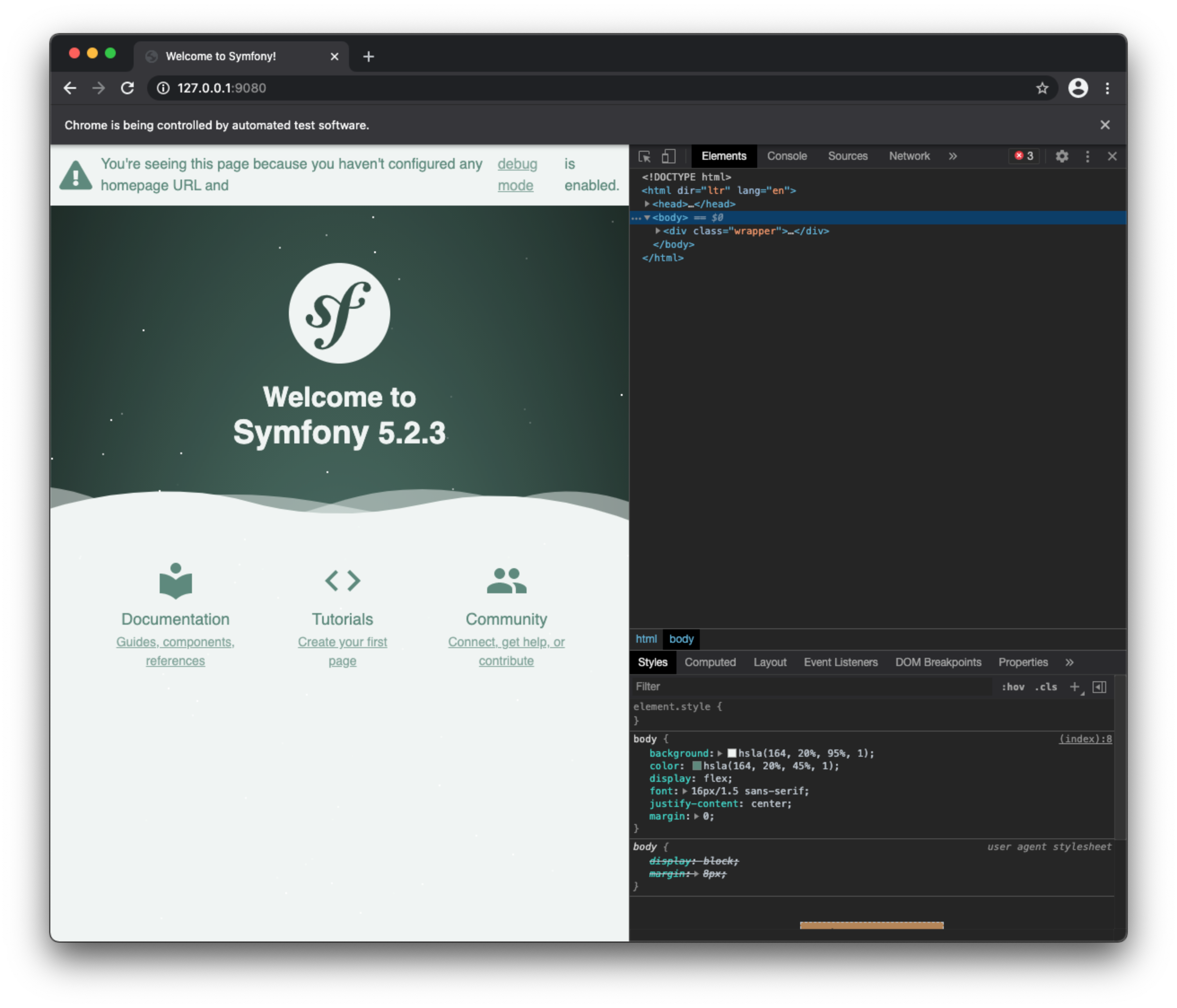 Symfony Panther debugging in Chrome