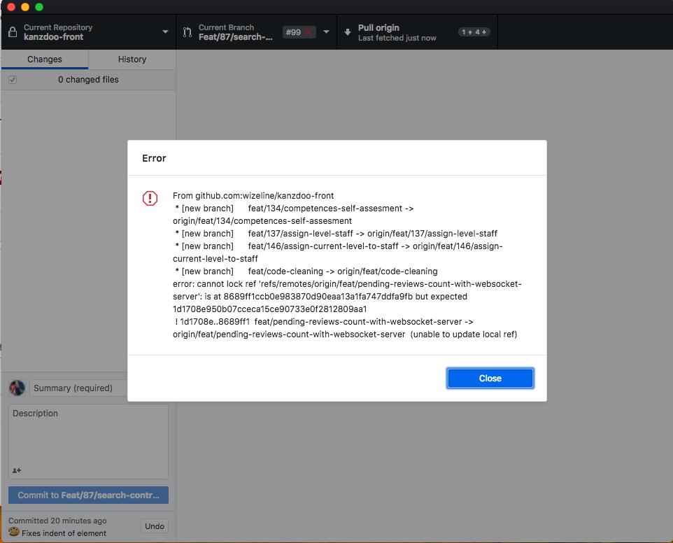 error: cannot lock ref 'refs/remotes/origin/ · Issue #5438