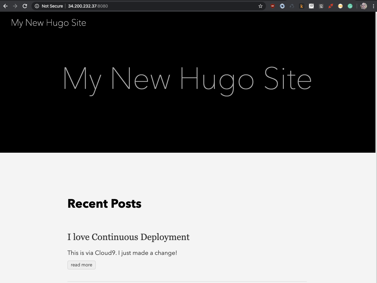 hugo website