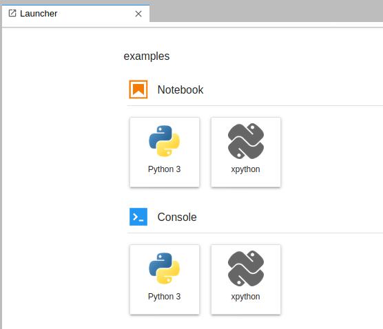 xpython-launcher