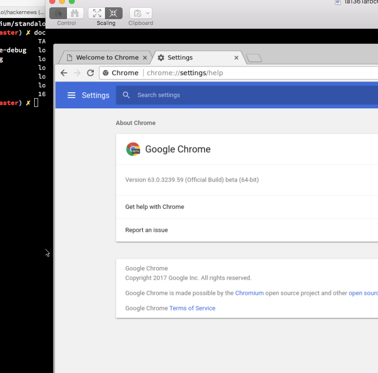 standalone chrome debug not able to launch in VNC · Issue