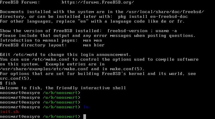 Junk before prompt at FreeBSD vty with sc driver · Issue