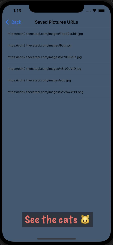 Screenshot 2021-10-09 at 01 13 09