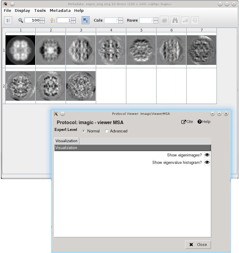 Displaying results of MSA protocol