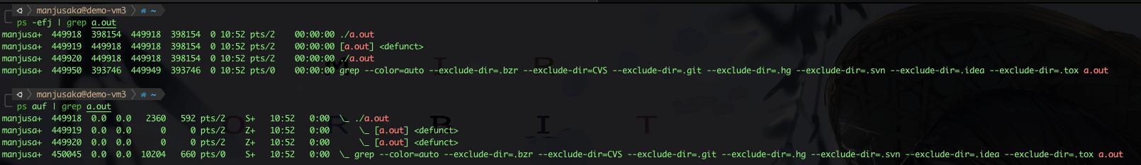 Daemon Process Output2