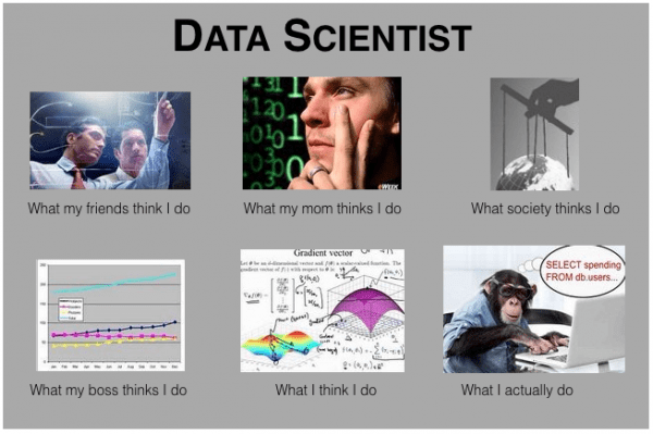 Data Science. What they think...