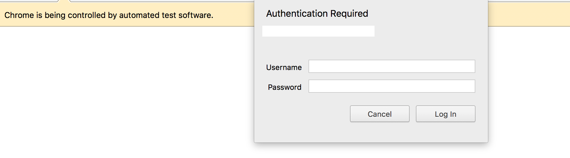 basic auth dialog · Issue #418 · GoogleChrome/puppeteer · GitHub