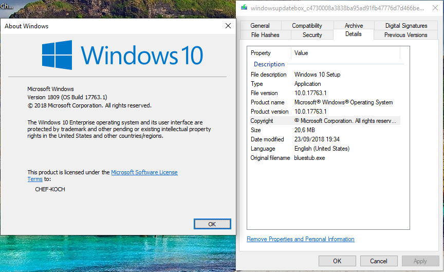 Windows 10 RS 5 RTM Build 1809 Refresh (17763 107) - All Download