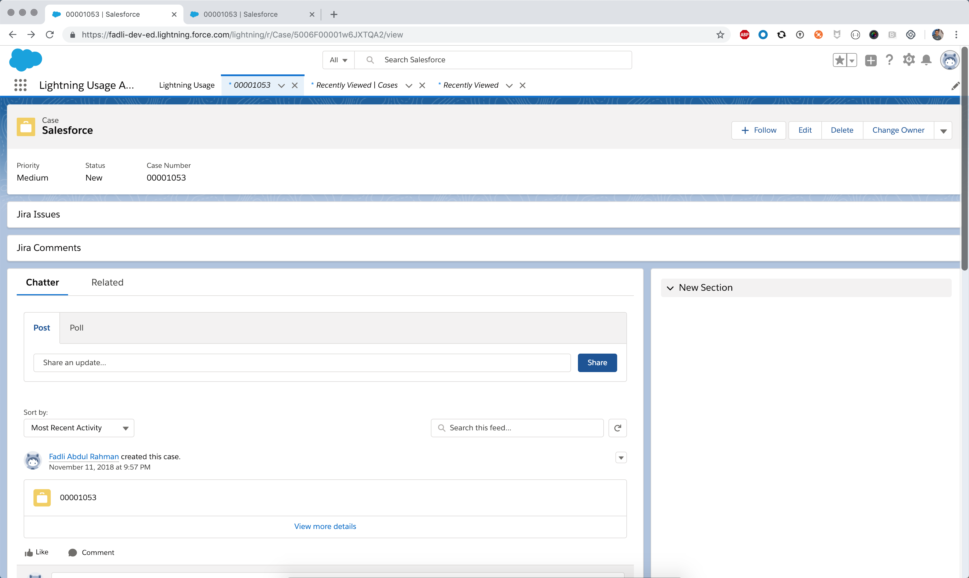 Salesforce Lightning Experience does not render some