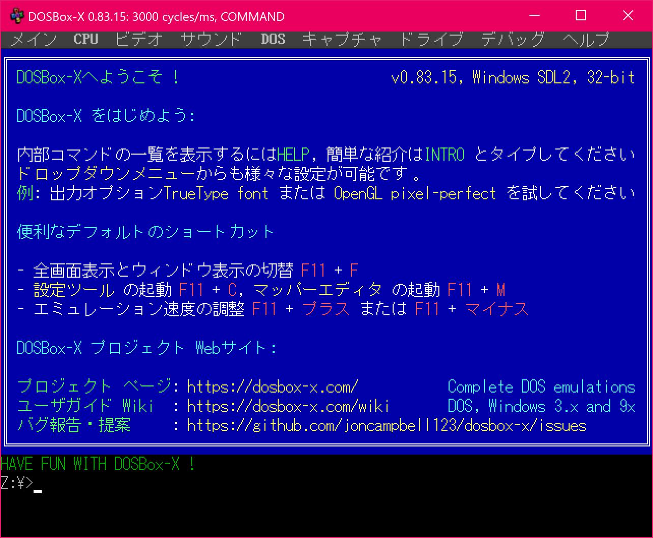 Japanese DOS/V emulation