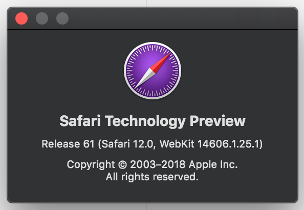 Google fonts not displaying on Safari 12/macOS Mojave in combination