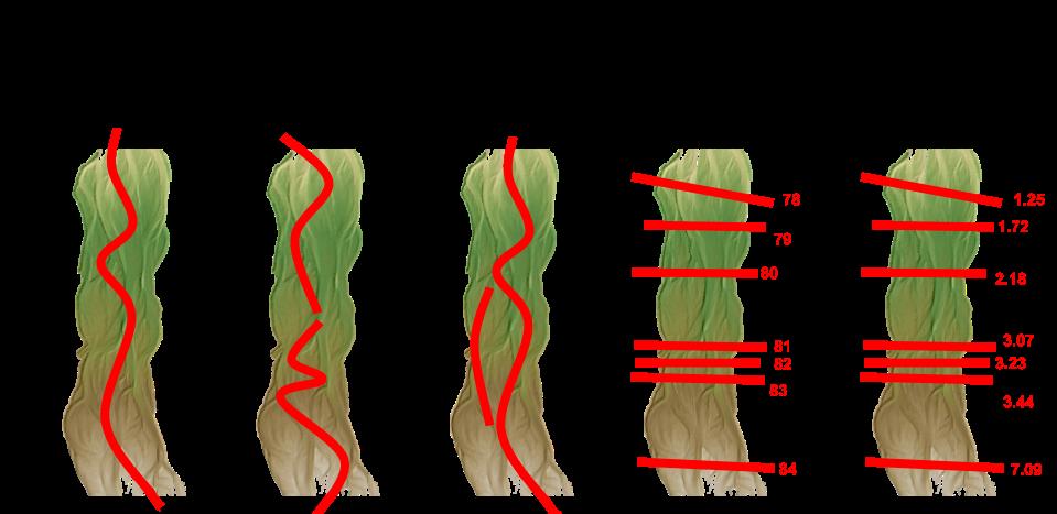 long profile cases