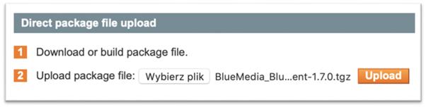 Direct package file upload