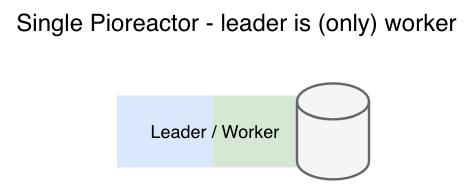 single pioreactor