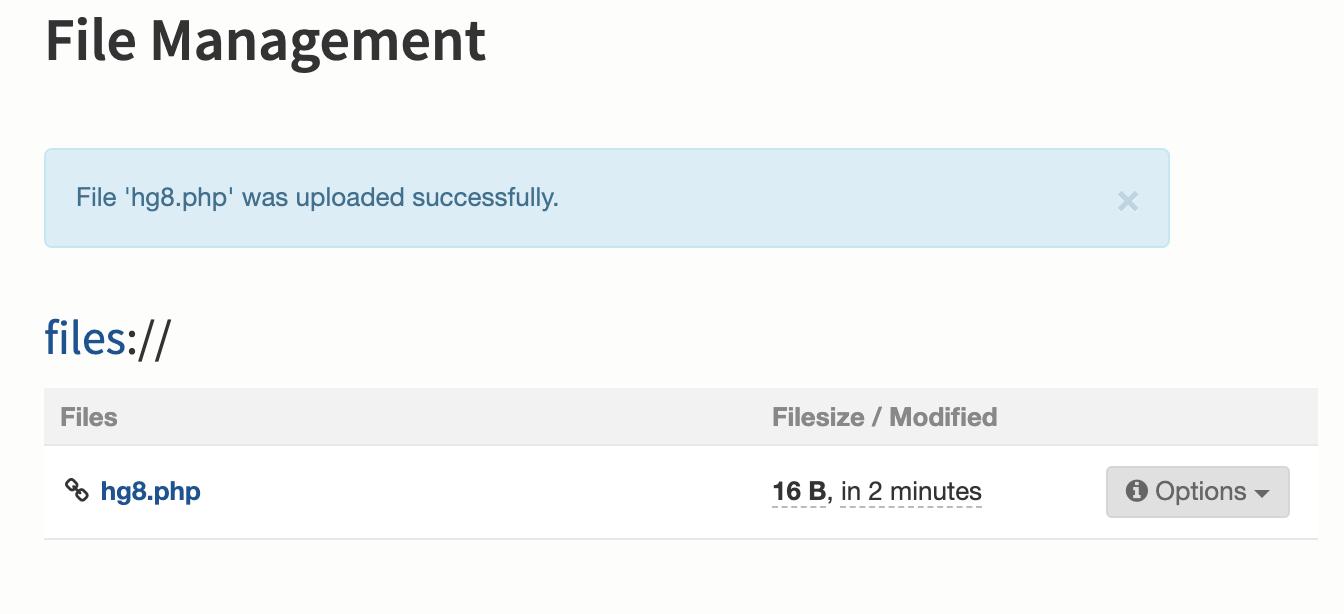 bolt php file upload