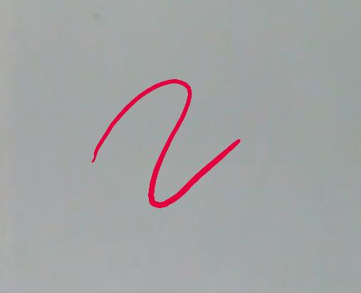 signature_pad - Bountysource