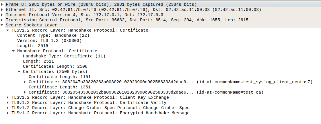 rsyslog ( rsyslog and closely related libraries )